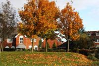 Fall Real Estate Investing