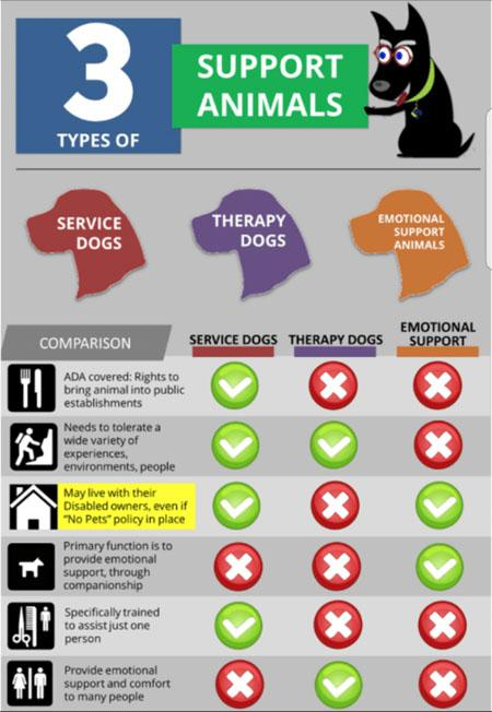 rental applications with emotional support animals
